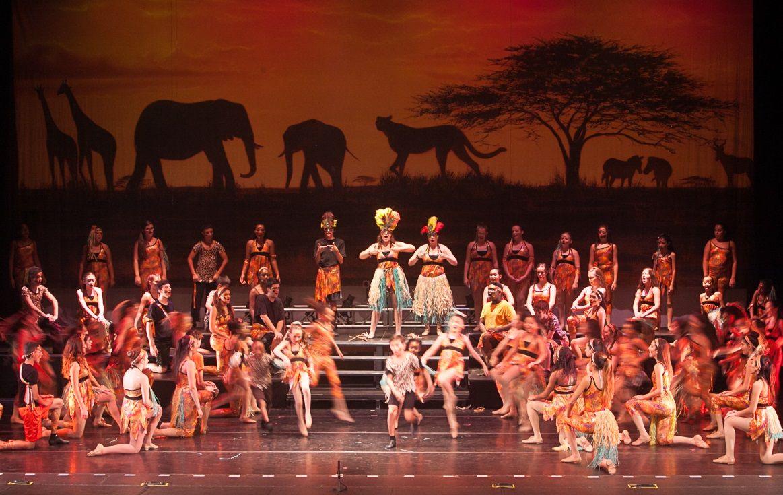 Theatre Arts Center Of Bethlehem Pa The Lion King