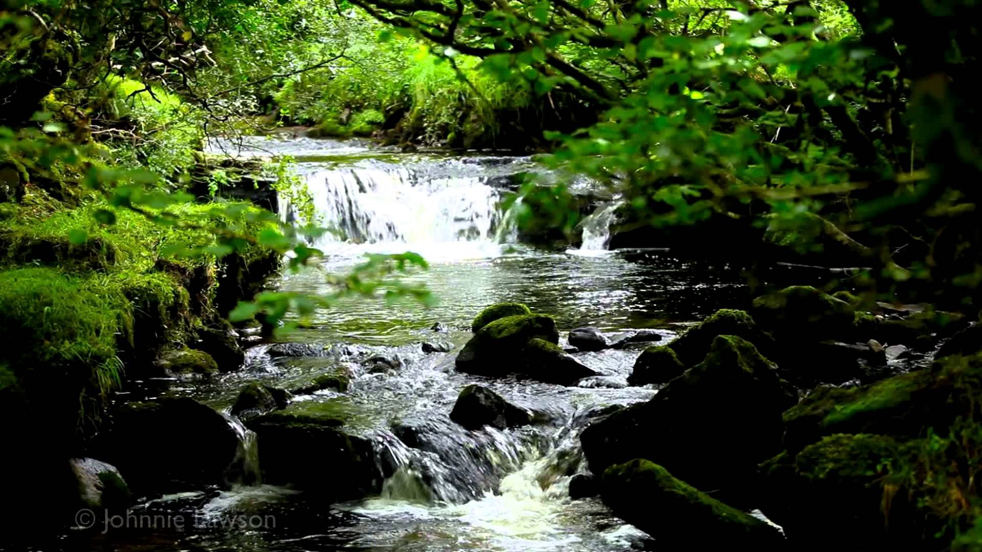1 Hour Of Soothing Nature Sounds In Hd Relaxing Sound Of Water And Birdsong Meditation Johnnielawson Nature Sounds Classical Music Waterfall
