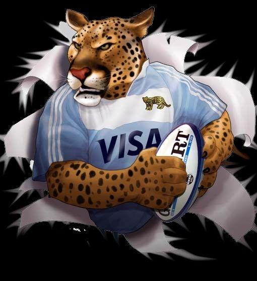 los-pumas1.jpg 510×558 pixels | Rugby, Pumas, Argentina rugby