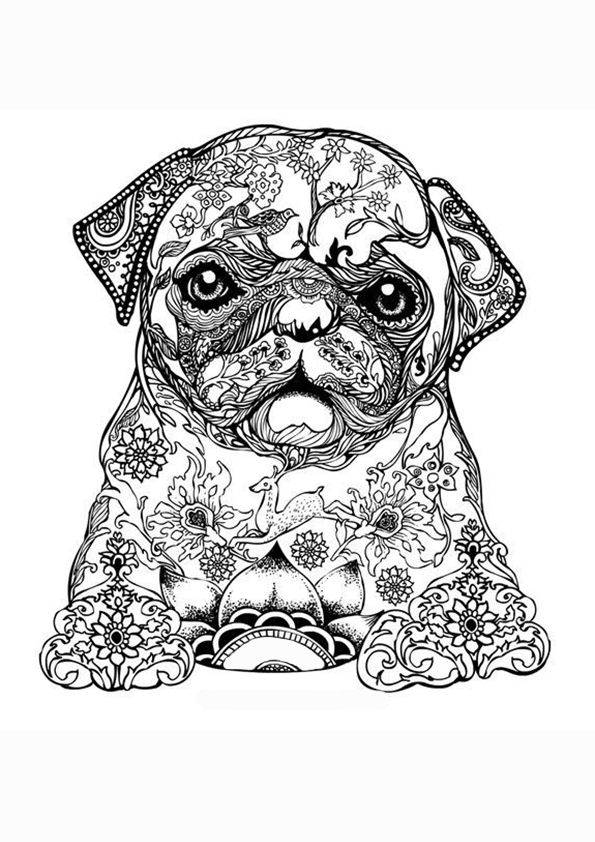Kleurplaten Voor Volwassenen Honden.Kleurplaat Volwassenen Mopshond Ideeen Voor Knutsels