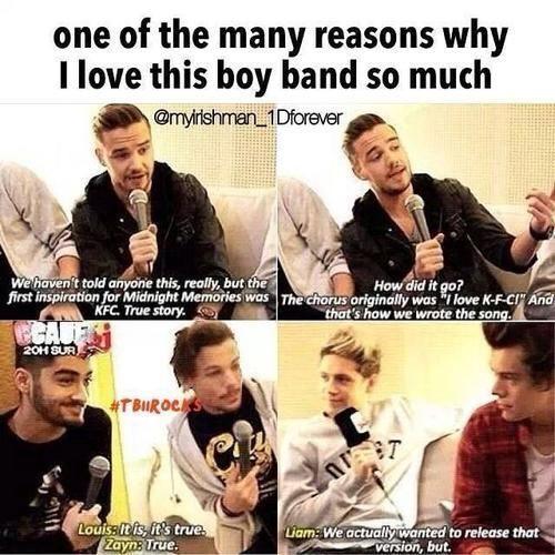 1D Memes - 3) 1D Memes-One Direction as a Group