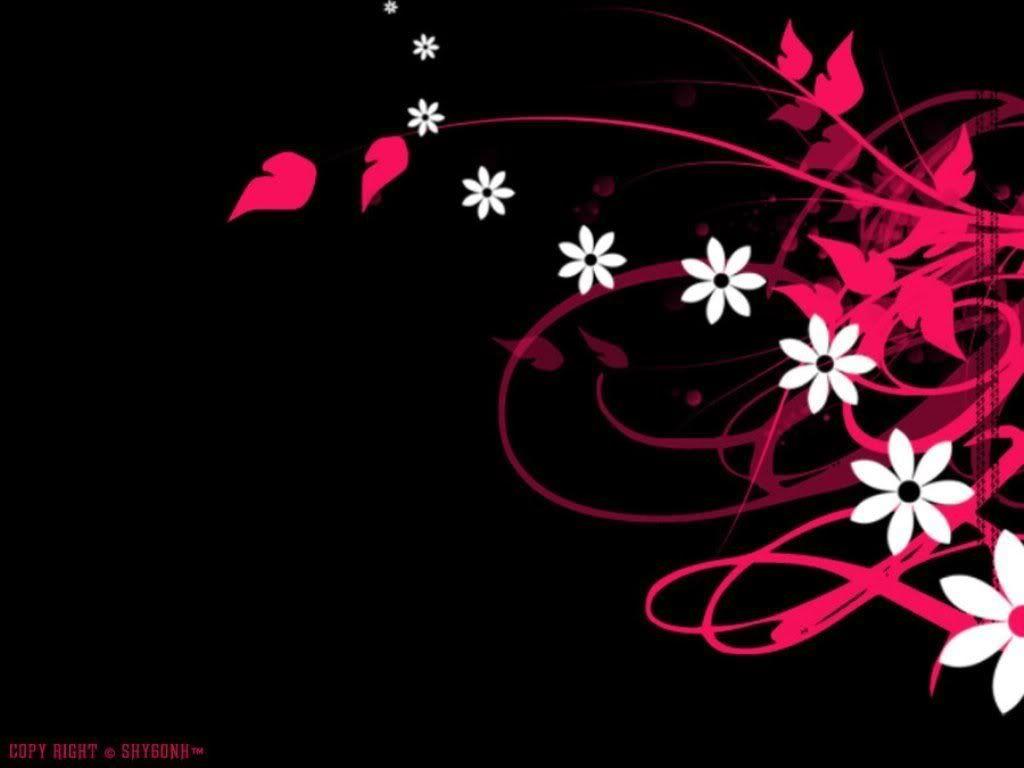 Black Flowers Lyrics 3 Background Jpg 1024 768 Pink And Black Wallpaper Wallpaper Backgrounds Black Wallpaper