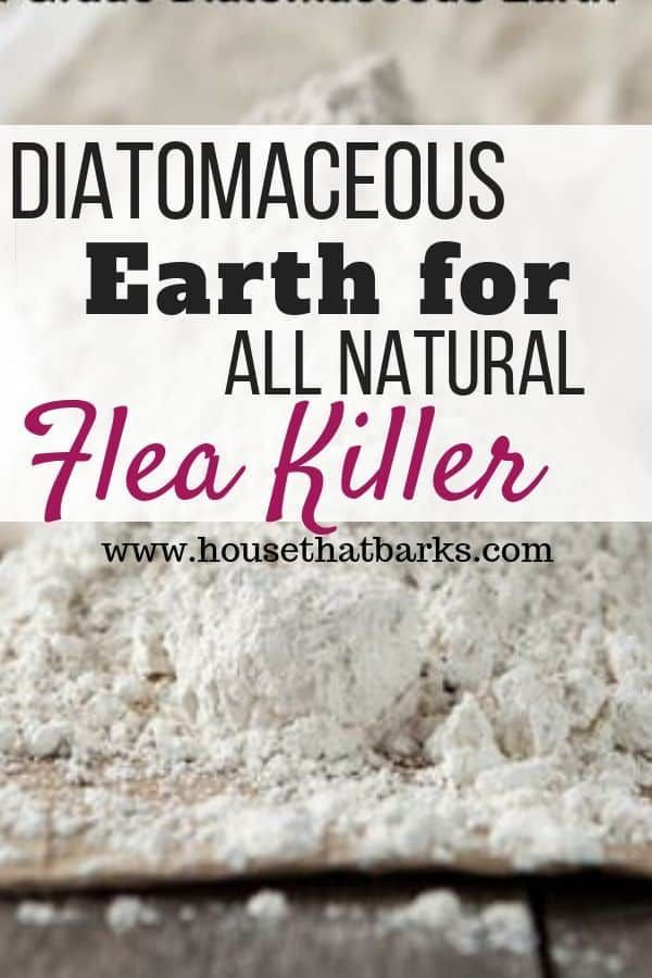 Using Food Grade Diatomaceous Earth Will Control Those Pesky Fleas In Your Yard It S Easy And Effective Agains Diatomaceous Earth Fleas All Natural Dog Food Dog Nutrition