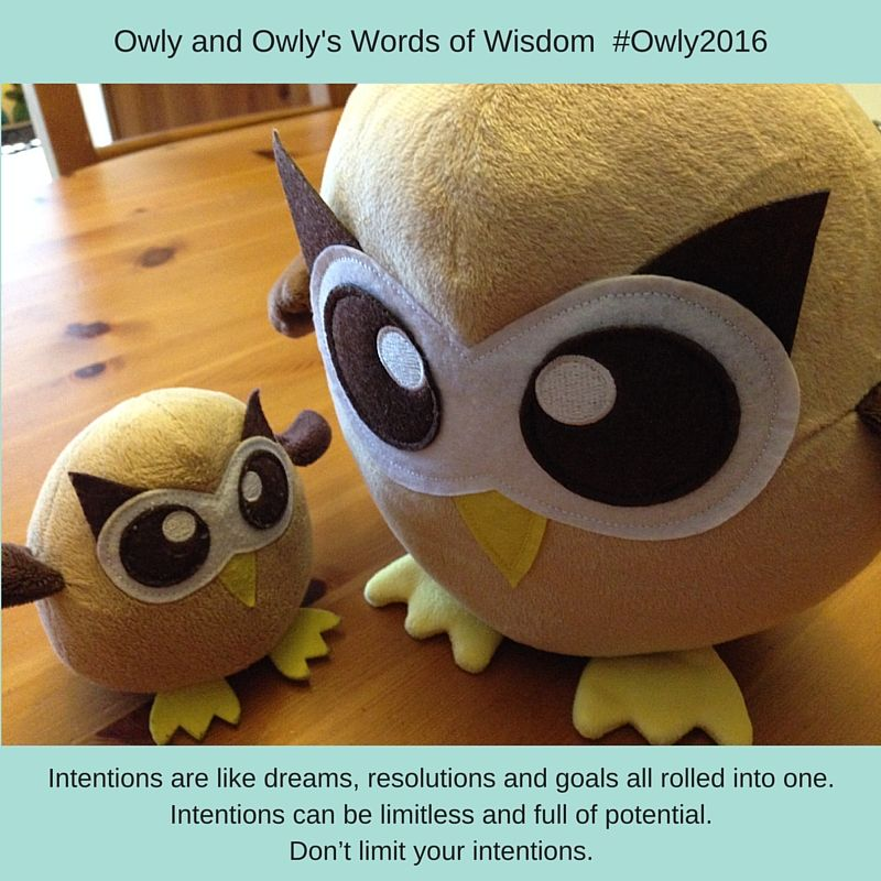 Intentions are like dreams, resolutions and goals all rolled into one. Intentions can be limitless and full of potential. Don't limit your intentions. #Owly2016 #lifeofowly #OwlysWordsOfWisdom (February 2, 2016)