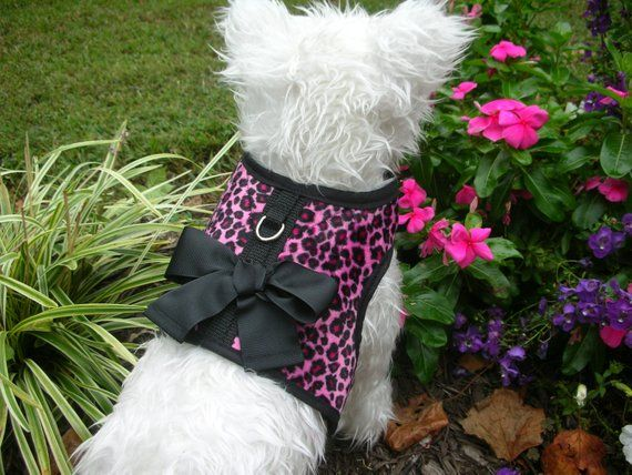 Pink Leopard Small Dog Harness With Bow Dog Harnesses Pet