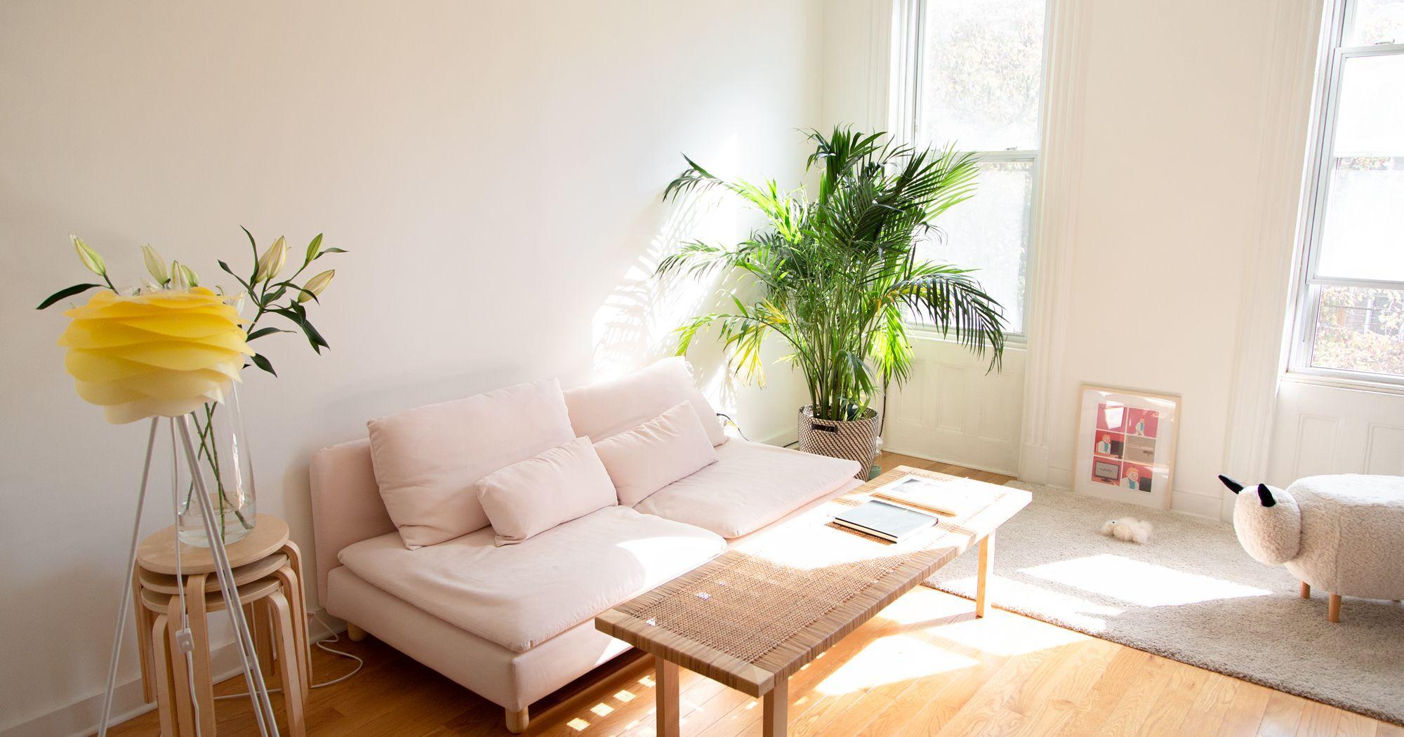 My 1 Bedroom In Brooklyn Costs 2 700 Here S How Big It Is One Bedroom Apartment 1 Bedroom Flat One Bedroom