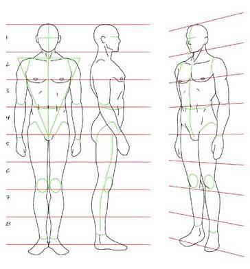 Figurin Hombre Basico Frente Espalda Cuerpo Humano Dibujo Dibujos Para Principiantes Bocetos Del Cuerpo Humano