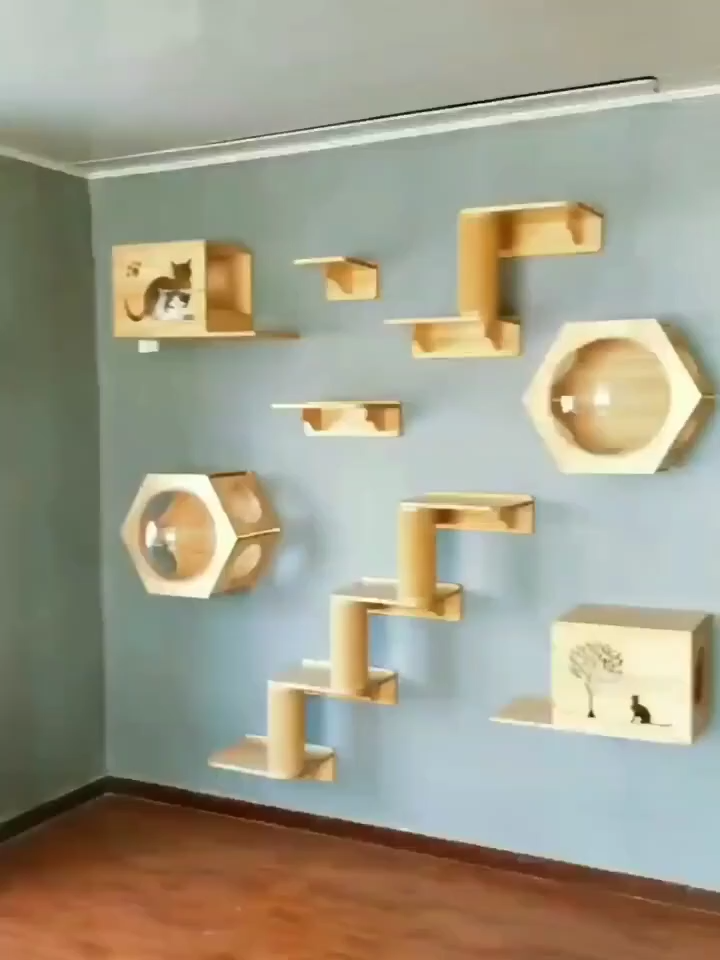 cat playground😹😻see more on my youtube link in the ◾◾◾ bellow