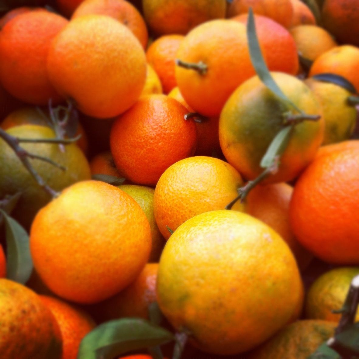 Orange....