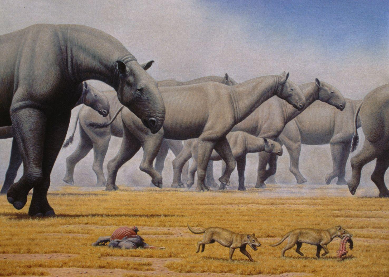 Bestias Prehistoricas Parte 4 [No Dinosaurios] | Extinct ...