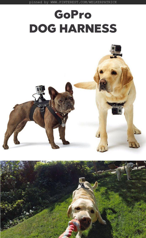 Dog Harness Black Action Cameras Sport Dv Accessories Sale