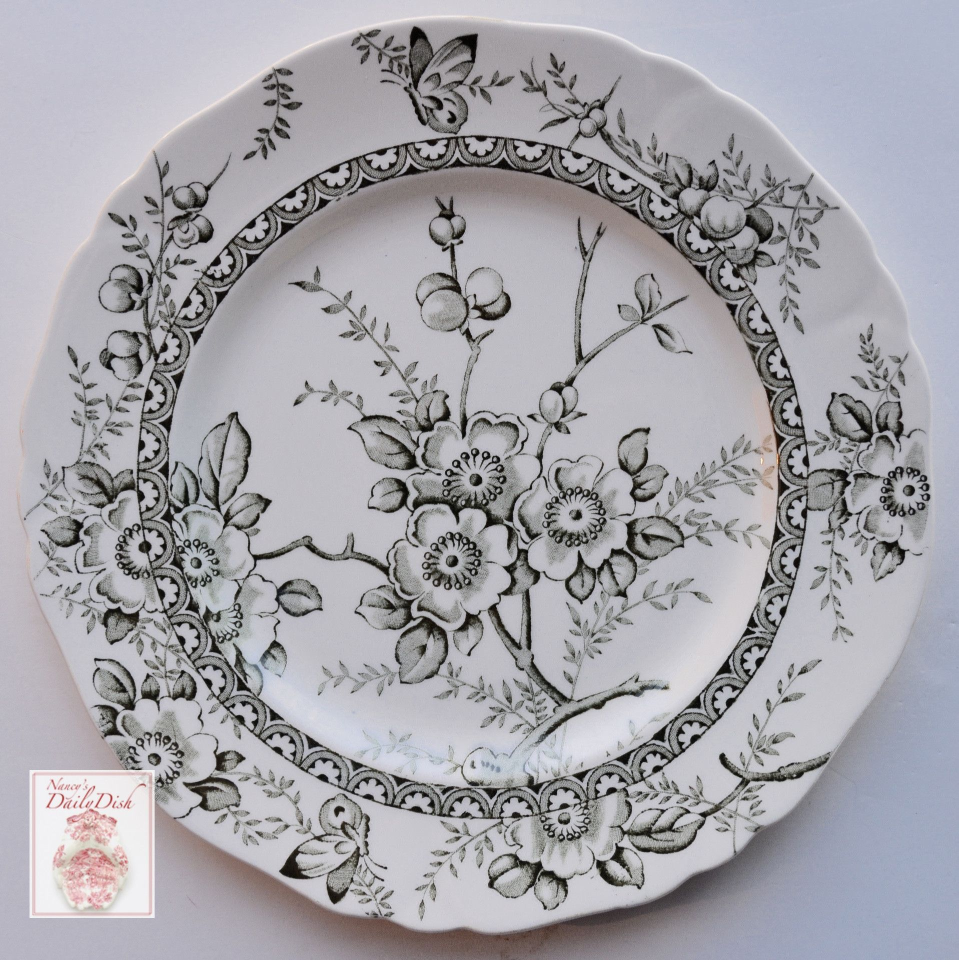 Green Toile English Transferware Plate Butterfly Flowers Berries