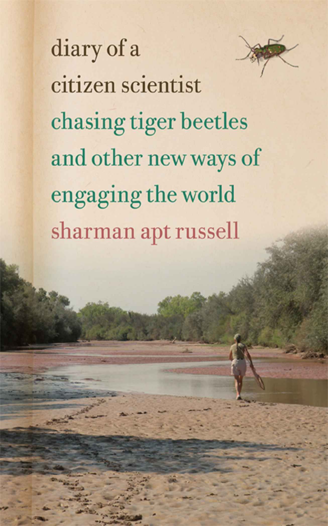Diary of a citizen scientist chasing tiger beetles and