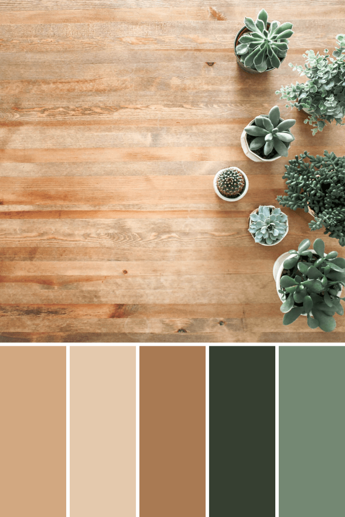 Color Palettes: Potted Plants – This Growing Home