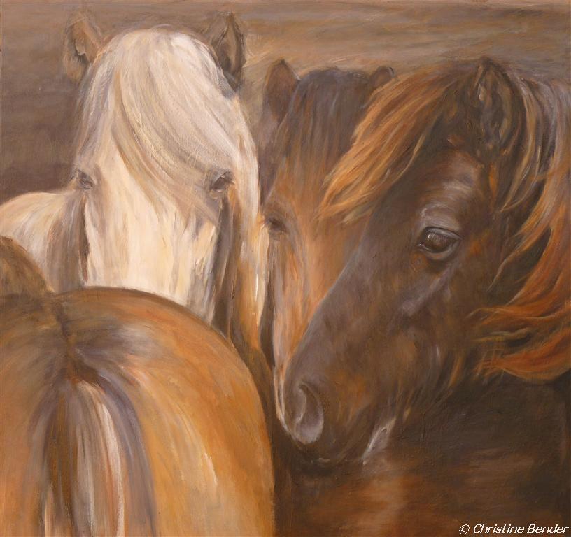 geborgen in der herde acryl auf leinwand 100x100 magical horses painting foto 150x100 leinwanddruck bilder