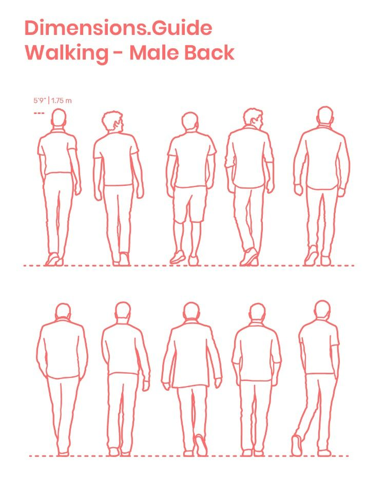 Walking Males Back Human Figure Sketches Posture Drawing Sketches Of People