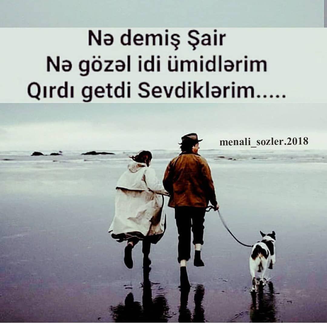Fikirlerinizi Yorumlarda Yazin Menali Sozler 2018 Azerbaycan Azerbaijan Aztgram Baku Baki Gence Hikaye Azeri Azer Movie Posters Movies Instagram