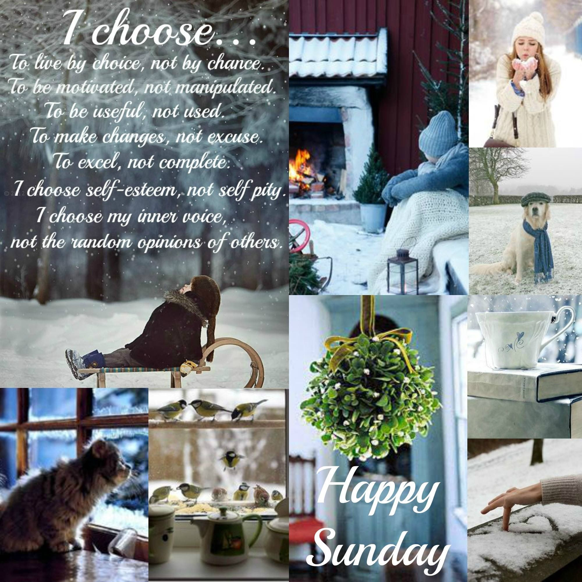 Happy Weekend, Happy Sunday, Mood Boards, Monthly Quotes, Blessed Sunday,