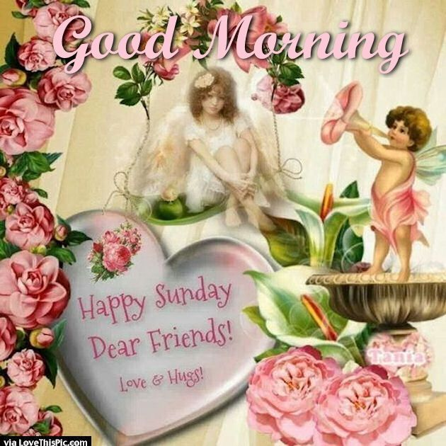 Good Morning Happy Sunday Dear Friends good morning sunday ...