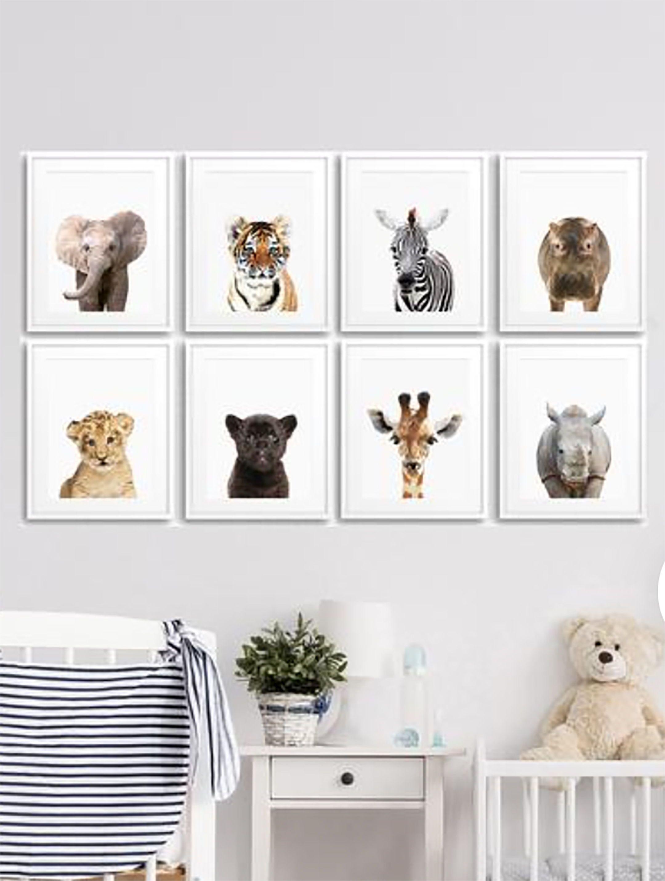 8 Set Of Safari Animal Prints Eight Piece Nursery Animal Wall Art Baby Animal Posters For Nursery Printable Kids Room Prints 057 Kids Room Prints Kids Room Printables Animal Wall Art Nursery