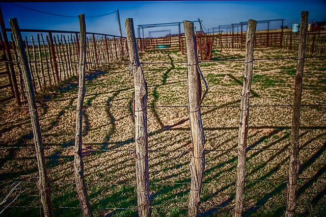 Stick Fence Posts by oked via Flickr #shadecontainergardenideas