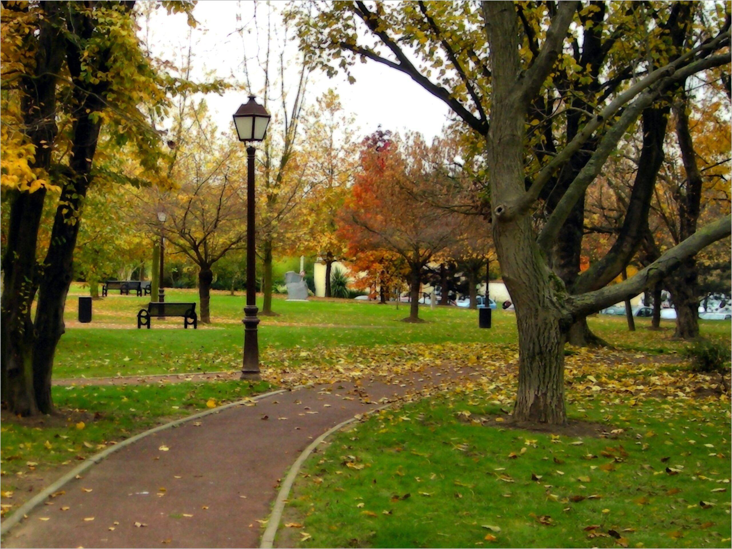 Autumn in hyde park wallpaper 4k in 2020 hyde park