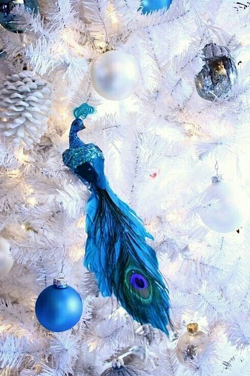 Pin by Sheri Morris on Beautiful Christmas Time Pinterest - peacock christmas decorations