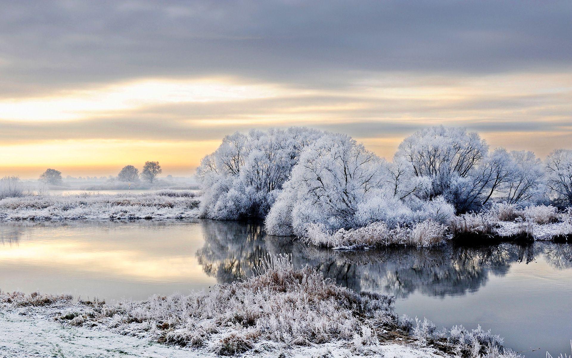 Descargar River germany trees winter