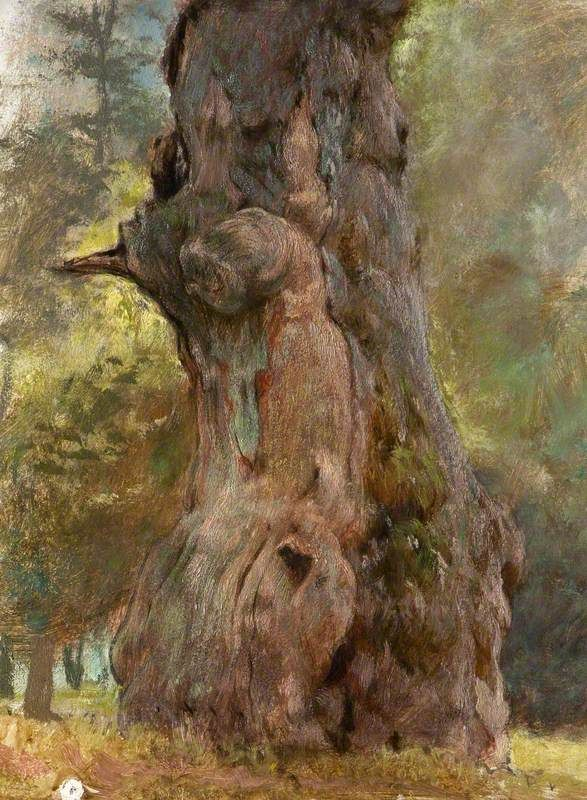 a gnarled tree trunk george elgar hicks george elgar
