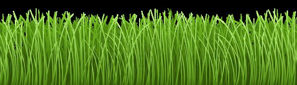 Grass Ground Cover Transparent Png Clip Art Image Clip Art Art Images Free Clip Art