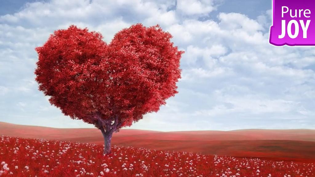 Photo of Psychological Tips For Love – Psychological Love Tips