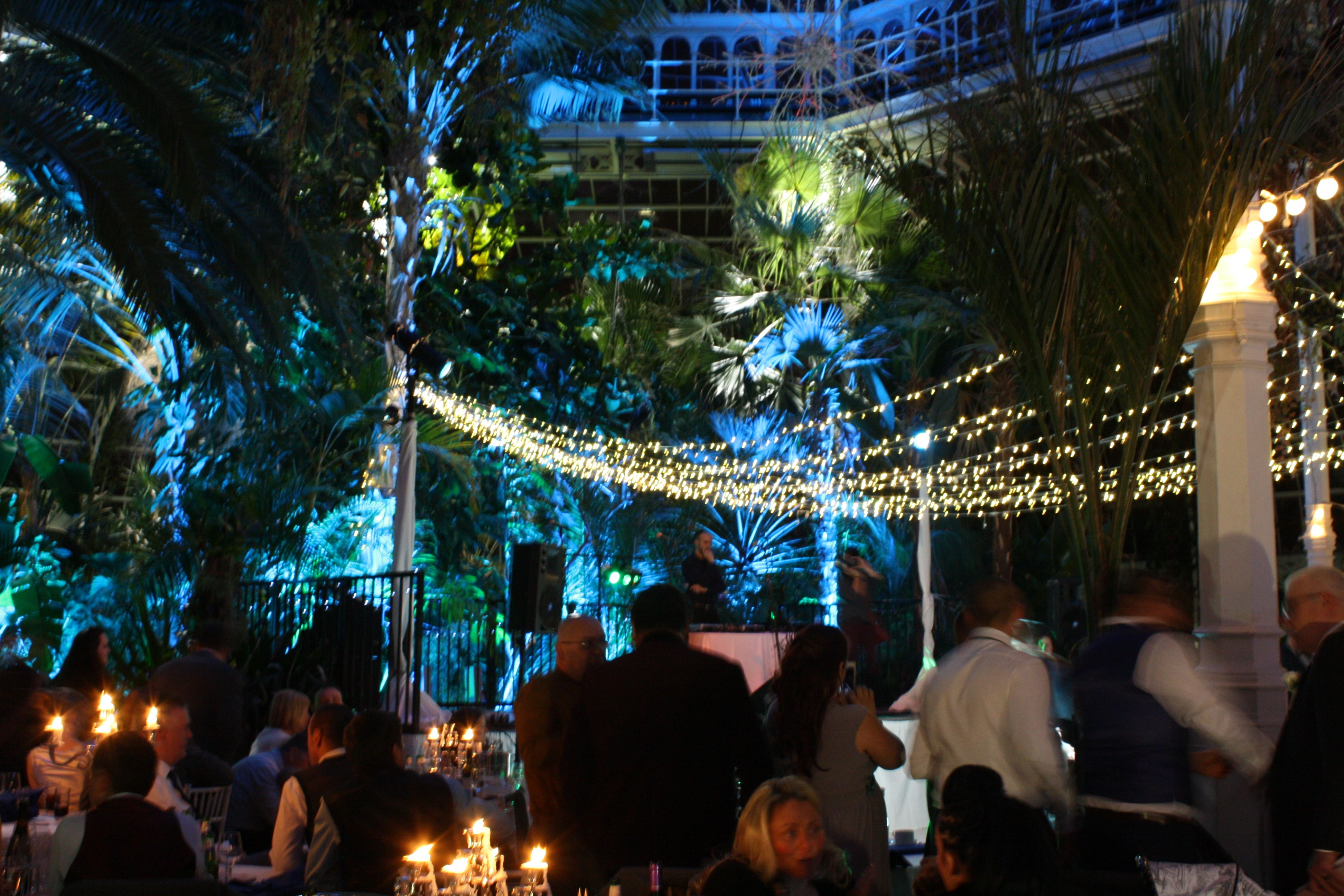 Winter Wedding Lighting Backdrop Sefton Palm House