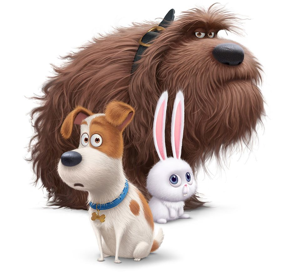 Illumination Sets Release Date For Louis C K Starring The Secret Life Of Pets Pets Movie Secret Life Of Pets Animated Movies