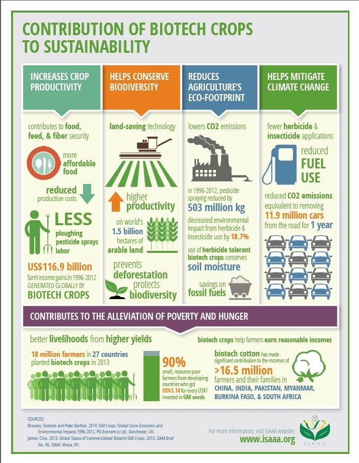 Isaaa S New Infographic Shows How Biotech Crops Contribute To
