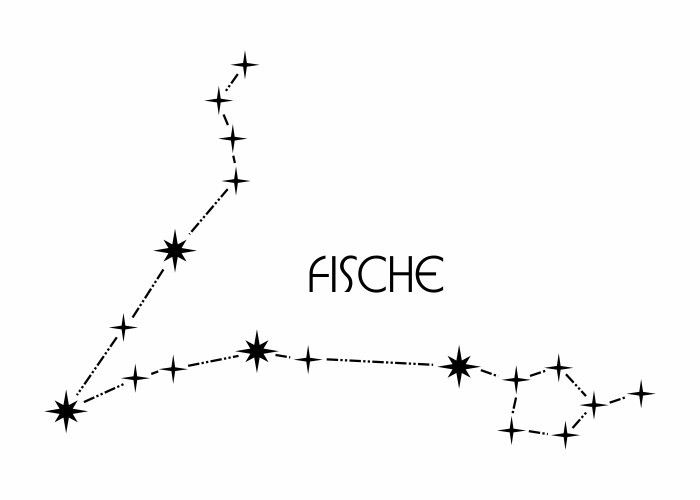 Sternbild - Fische #constellationpiercing