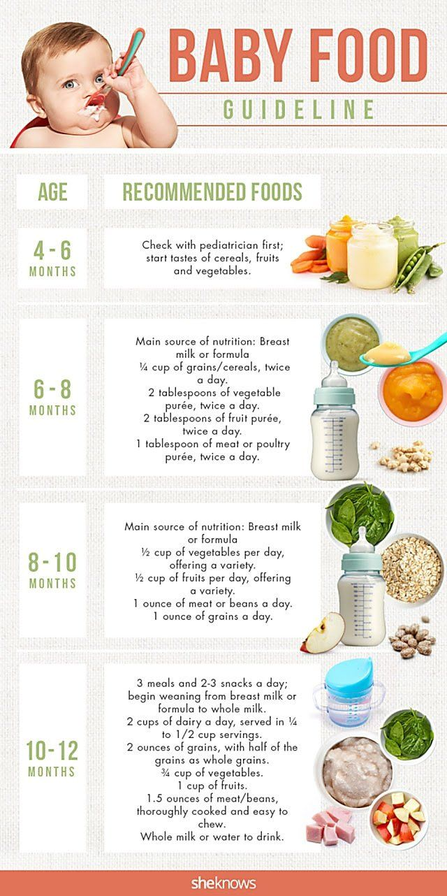 Introducing Foods To Baby Guideline