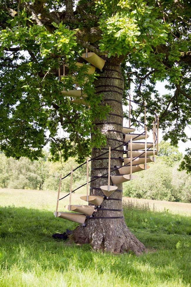 Spiral Treehouse Steps That Dont Hurt The Tree Strap This Staircase Onto