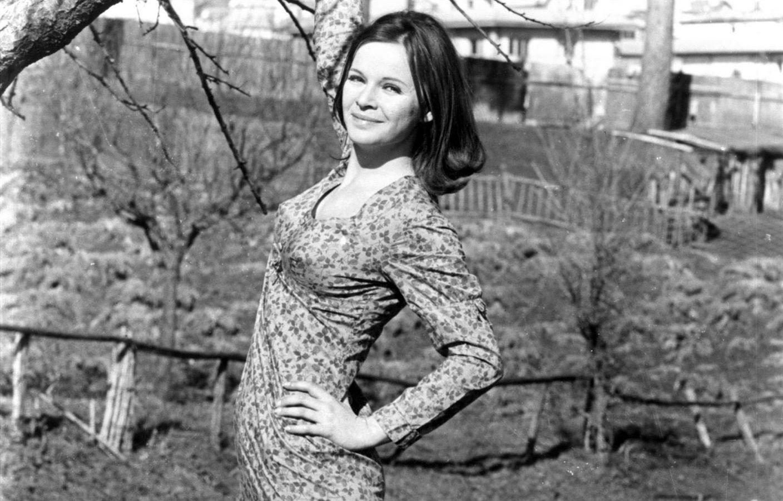Laura Antonelli (born 1941 (Pola, Italy: now Pula, Croatia) nudes (92 photo), Tits, Is a cute, Twitter, bra 2018