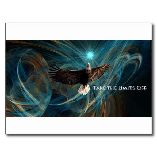 Take the Limits Off Eagle Post Card