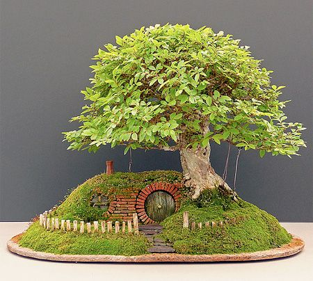 Unique bonsai tree with small house built into the side of for Cool bonsai tree
