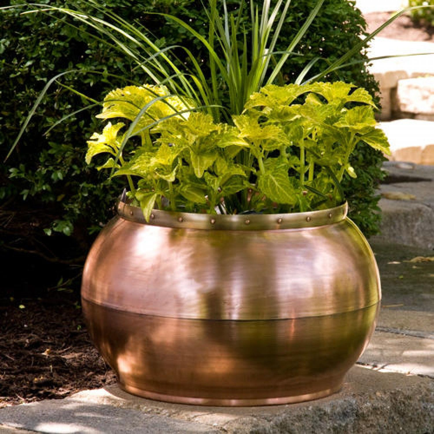 Copper Bowl Planter with Decorative Band