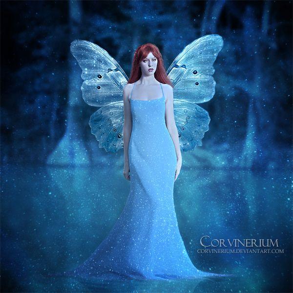 Enchantment Of Night by Corvinerium.deviantart.com on @deviantART