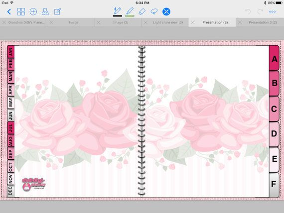Pretty Pink Paperless (Digital) Planner (vertical
