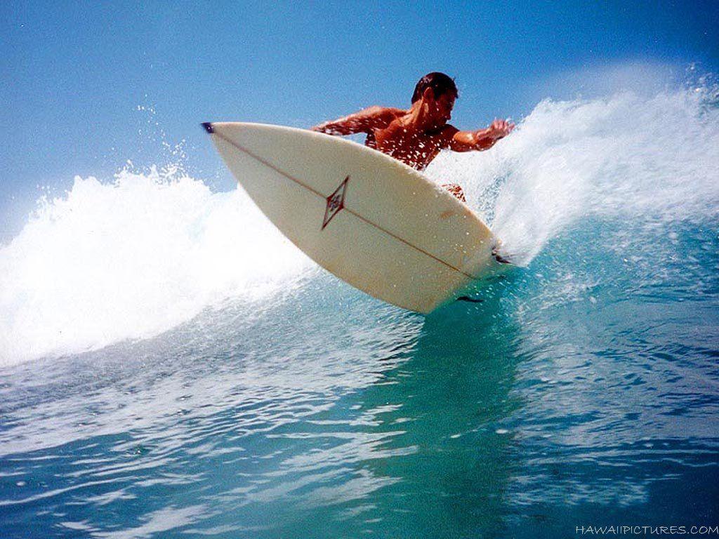 Обои доски для серфинга, солнечный, лето, Серферов. Спорт foto 9