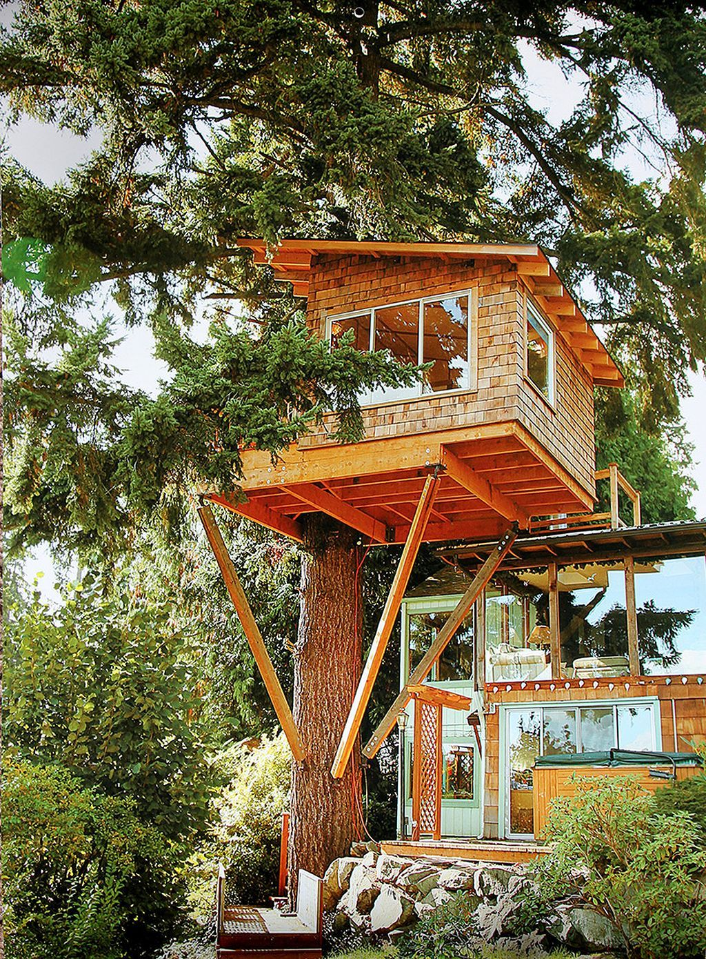 смотреть картинки дома на деревьях легкоступова