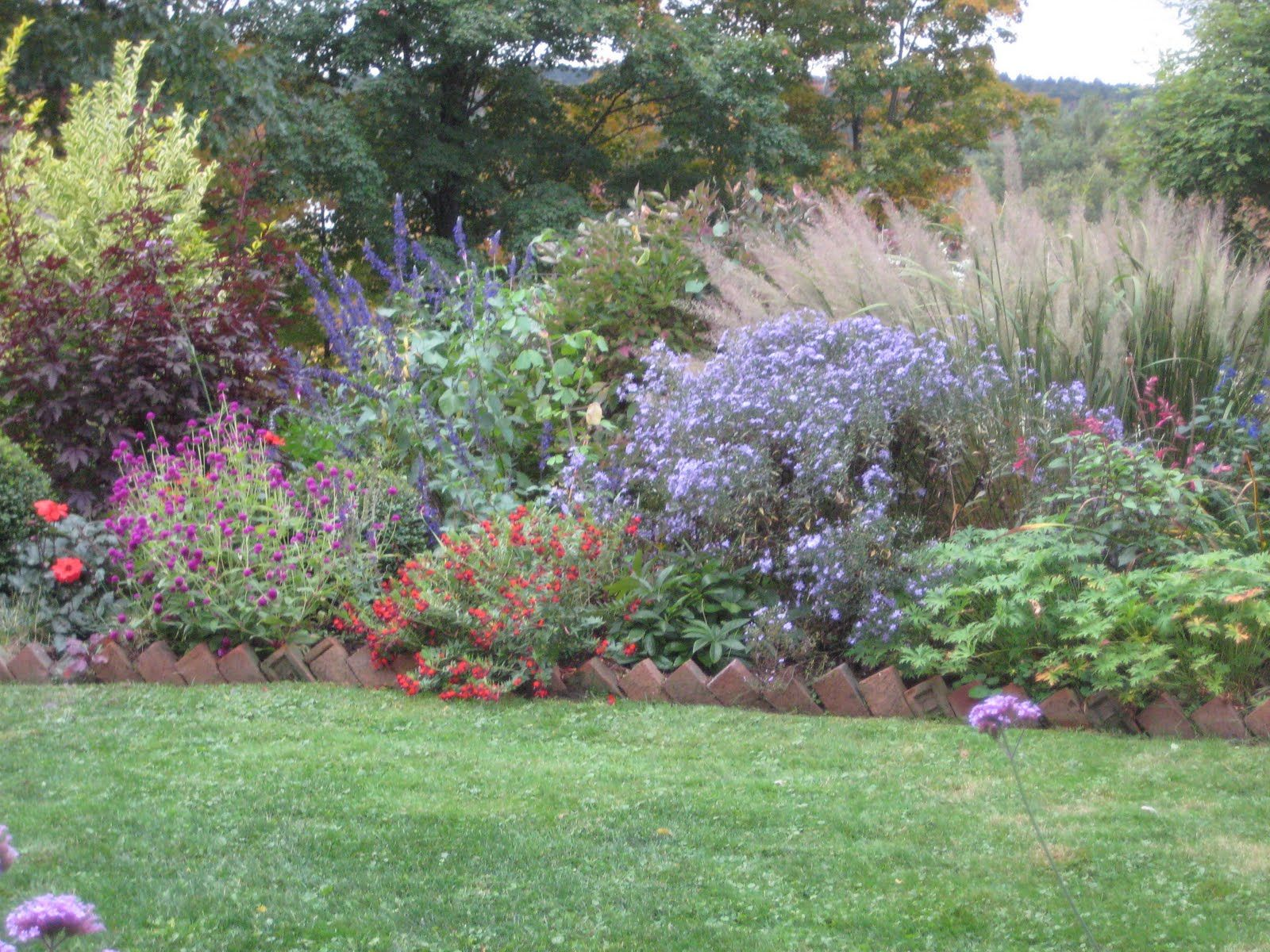 Beautiful mixed border with brick edging aster 39 liitle for Grass border