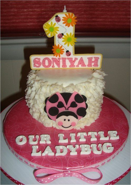 Pink Ladybug First Birthday Childrens Birthday Cakes Made By Me
