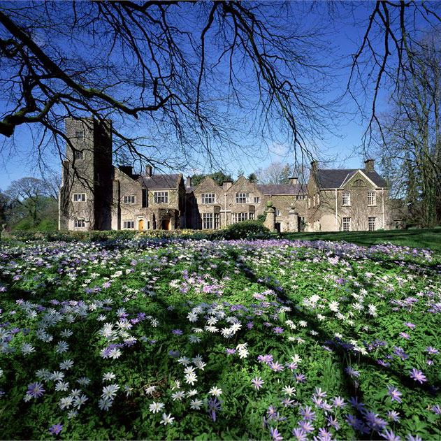 The Ultimate Guide to Castle Wedding Venues 22 of the
