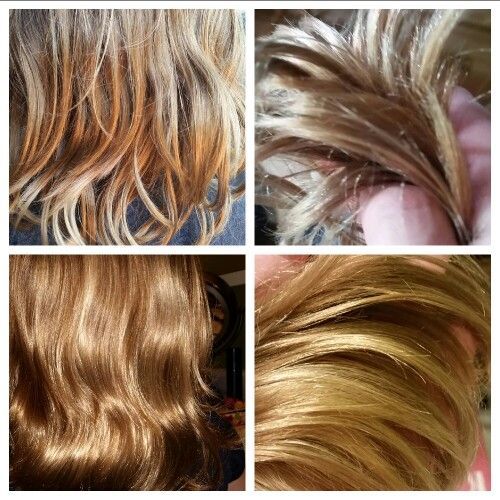 Amazing Monat! This is my 7 year olds chlorine damaged hair before ...