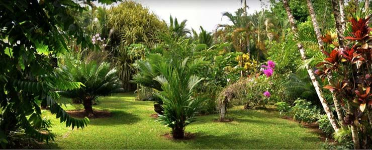 Hotel magellan cahuit jardin tropical costa 740 for Piscina de jardin en costa rica